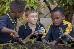 Image: three children in school uniform gardening